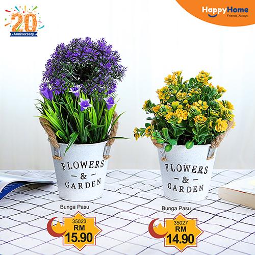 HH_Raya_Small Plant